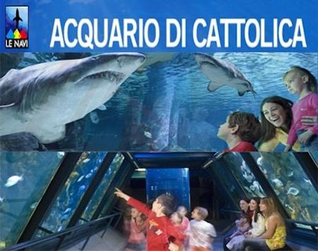 Di Cattolica Related Keywords & Suggestions - Acquario Di Cattolica ...