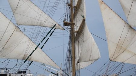 Tall Ship Races