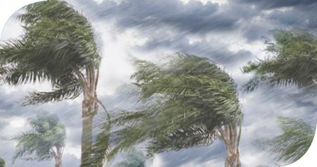 Ciclones, huracanes, tifones
