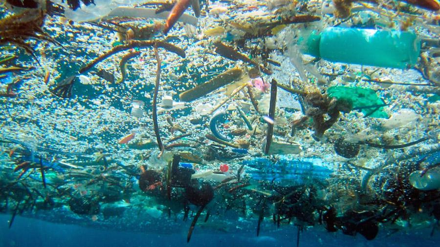Resultado de imagen para contaminacion del mar mediterraneo