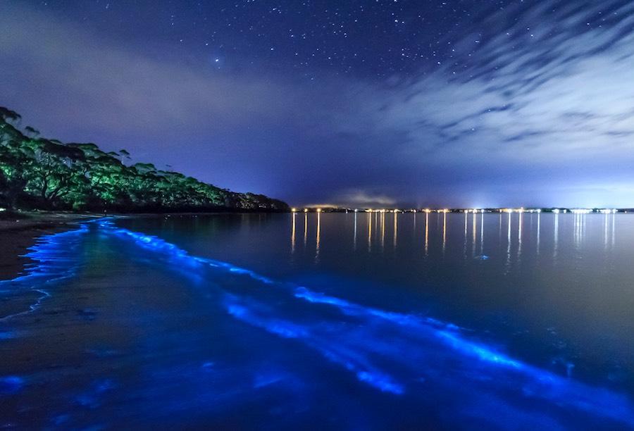 mar de estrellas 3