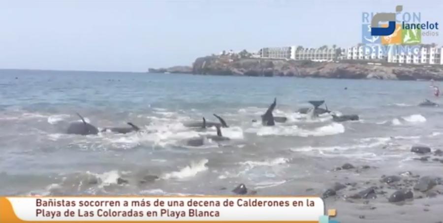 calderones