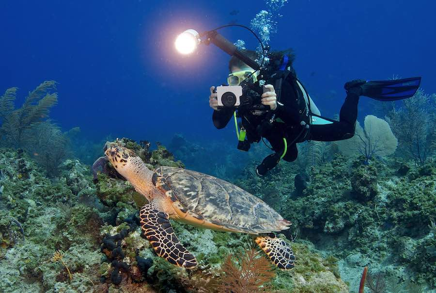 camara de fotografia subacuatica 2