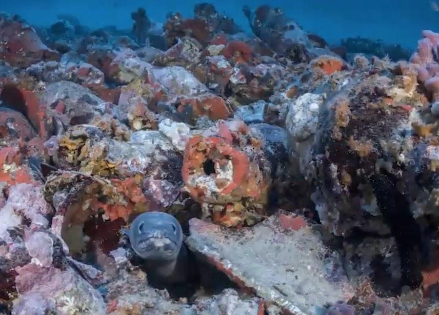 Arqueología Marítima 1