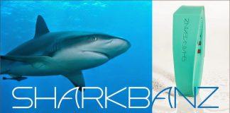 Ataques de tiburones