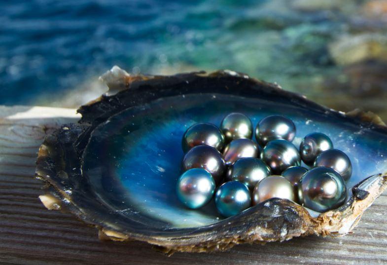 ac85e623ca96 Cómo nacen las perlas naturales y cómo se obtienen las cultivadas