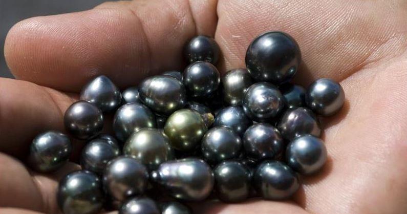 perlas de tahiti