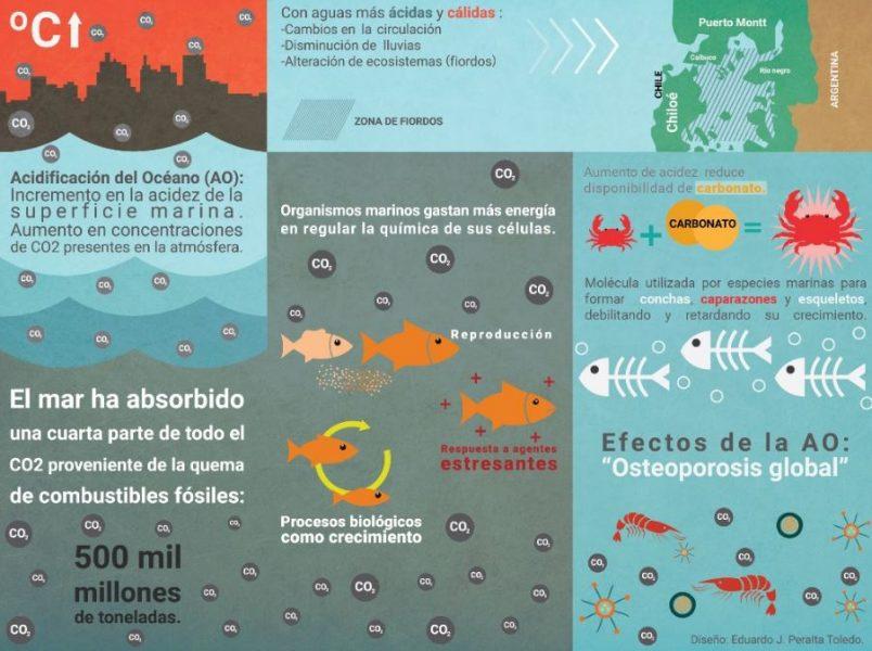 acidificación de los mares